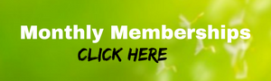 Access Consciousness monthly memberships